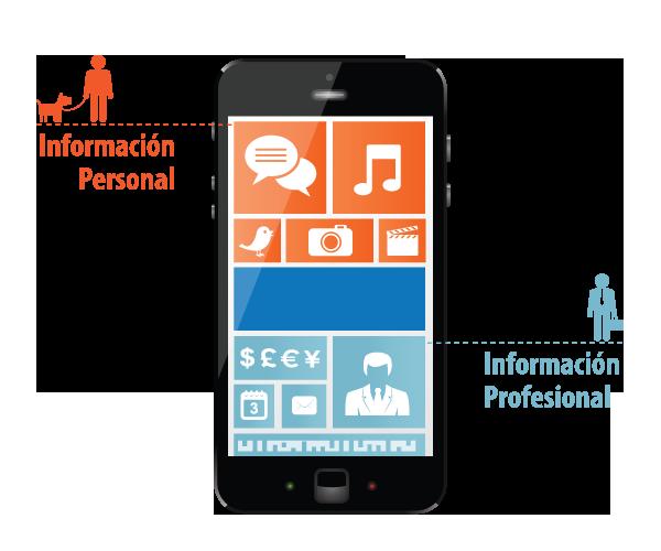 Informacion_Personal_Información_Profesional